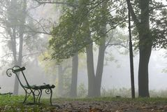 Foggy morning Royalty Free Stock Photo