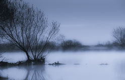 Foggy morning. Fog at waterside in early morning. Foggy scene Stock Photography