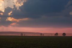 Foggy morning on agricultural land Royalty Free Stock Images