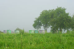 Foggy morning in apple orchard with beehives Stock Photos