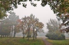 Foggy morning in the autumn city park Royalty Free Stock Photos