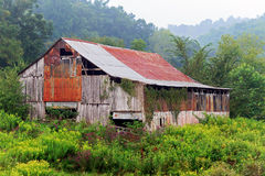 Foggy Morning Barn Royalty Free Stock Images