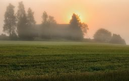 Morning. a beautiful summer sunrise in the field Stock Images