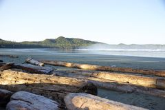 Foggy morning, blue sky, Cox Bay, Tofino, British Columbia, Canada Stock Images