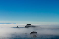 Foggy morning with blue sky, Oregon coast Royalty Free Stock Photo