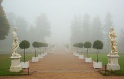 Foggy morning in the Catherine park. In Tsarskoye Selo royalty free stock photography
