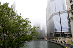 Foggy Morning in Chicago Stock Images