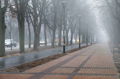 Foggy morning at city alley. The Foggy morning at city alley royalty free stock photo