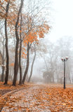 Foggy morning in city Stock Image