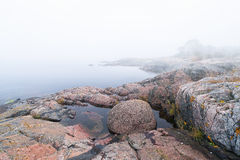 Foggy morning at coastline during late summer Stock Photos