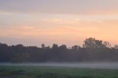Foggy morning Stock Photography