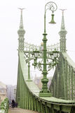Foggy morning. Freedom Bridge in Budapest, Hungary Stock Images