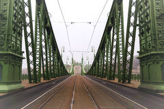 Foggy morning. Freedom Bridge in Budapest, Hungary Stock Photography