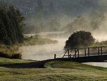 Foggy Morning Golf Course Royalty Free Stock Photography
