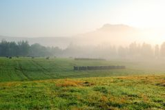 Foggy morning grassland landscape with trees and hills Royalty Free Stock Images