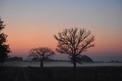 Foggy morning great colors royalty free stock image