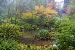 Foggy Morning at Japanese Garden in Fall Season Stock Photo
