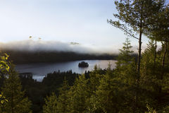 Foggy morning in La Mauricie National Park in Quebec Royalty Free Stock Image