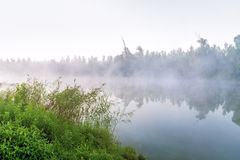 Foggy morning by the lake Royalty Free Stock Photo