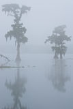 Foggy Morning on Lake Martin Royalty Free Stock Photo