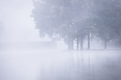 Foggy morning lake Royalty Free Stock Images