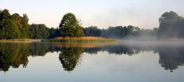 Foggy morning by the lake, V royalty free stock photos