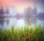 Foggy morning landscape in autumn park on the lake Stock Image