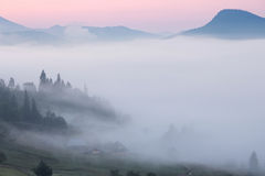 Foggy morning landscape of Carpathian mountains Stock Image