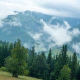 Foggy morning landscape of Carpathian mountains. Ukraine Royalty Free Stock Images