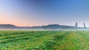 Foggy Morning Landscape Stock Images