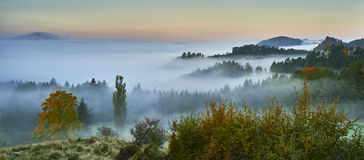 Foggy morning in the landscape Royalty Free Stock Image