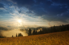 Foggy morning  landscape Royalty Free Stock Image