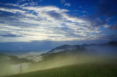 Foggy morning  landscape Royalty Free Stock Photo