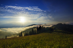 Foggy morning  landscape Royalty Free Stock Photos