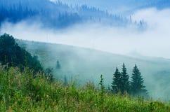 Foggy morning landscape stock image