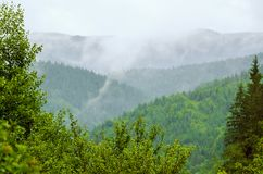 Foggy morning landscape stock photography