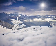 Foggy morning landscape in winter mountains Royalty Free Stock Photography