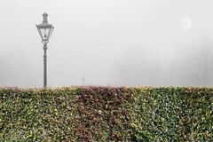 Foggy Morning with Lantern