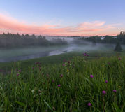 Foggy morning. Leningrad region. Russia Royalty Free Stock Photo