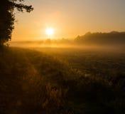 Foggy morning on meadow. Beautiful sunrise on polish countryside Stock Image
