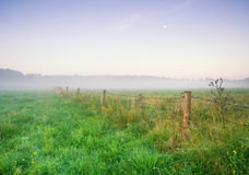 Foggy morning on meadow. sunrise landscape. Morning on polish meadow at sunset Stock Photography