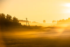 Foggy morning on meadow. sunrise landscape. Russia, summer Royalty Free Stock Photography
