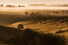 Foggy morning on meadow. sunrise landscape. Russia, summer Stock Images