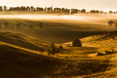 Foggy morning on meadow. sunrise landscape. Russia, summer Royalty Free Stock Image