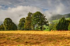 Foggy morning. Misty autumn morning over the mountain village Royalty Free Stock Images
