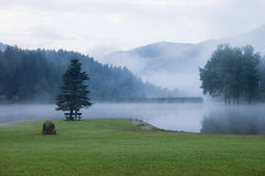 Foggy morning mountain lake Royalty Free Stock Image