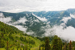Foggy morning in mountains. Royalty Free Stock Images