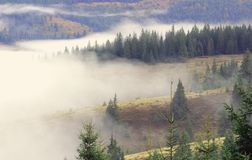 Foggy morning in the mountains Stock Photos
