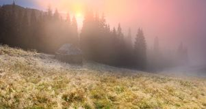 Foggy morning in the mountains royalty free stock photography