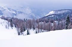 Foggy morning in the mountains, Slovenian Alps Royalty Free Stock Photos